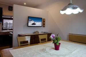 TV/Unterhaltungsangebot in der Unterkunft Appartement Seidner Achleit 30, Angerberg