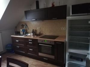 Kuchyň nebo kuchyňský kout v ubytování Penzion Pancéř