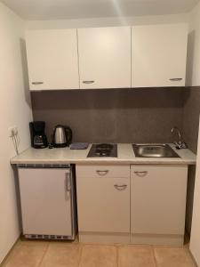 A kitchen or kitchenette at Appartement Hammerschmidt