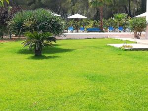 The swimming pool at or near VILLA Can Salud