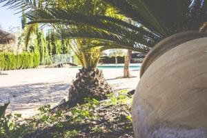 Holiday home Ctra. Fuente de Santiago - 4