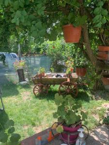 Градина пред Къща за гости Свети Георги