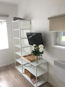 TV a/nebo společenská místnost v ubytování Studiový apartmán V Zahradě