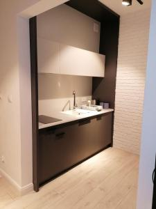 A kitchen or kitchenette at AbsyntApartment