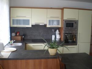 A kitchen or kitchenette at Holiday House Nespeky