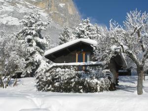 Chalets du Vieux Frêne durante l'inverno