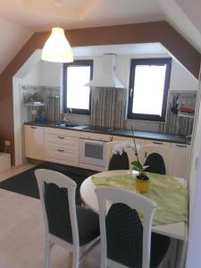 Kuhinja oz. manjša kuhinja v nastanitvi Apartment Knap