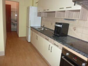Kuchyň nebo kuchyňský kout v ubytování Apartment Karlovy Vary