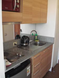 Una cocina o zona de cocina en Santiago Downtown Apartments Moneda
