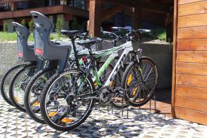 Biking at or in the surroundings of Horske Domy