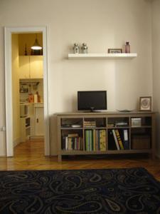 旅客之家公寓電視和/或娛樂中心