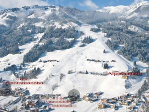 Appartement Alpenstern im Winter
