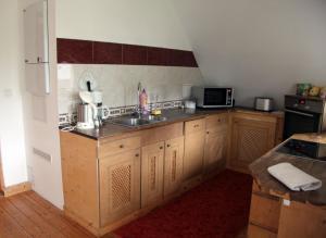 Küche/Küchenzeile in der Unterkunft Apartment in Chemnitz, Ebersdorfer Wald