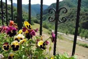 Viviendas Rurales Aldea de Dosamantes