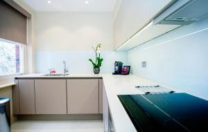 A kitchen or kitchenette at The Apartments by The Sloane Club