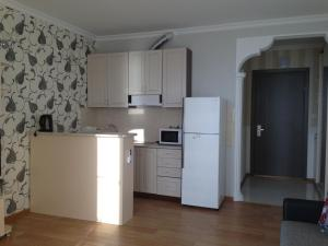 A kitchen or kitchenette at Kobaladze Apartments