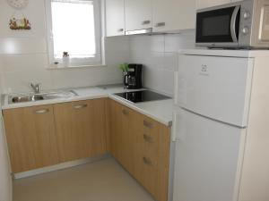 A kitchen or kitchenette at Apartment Pavlaković