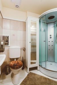 A bathroom at Grand Apartment Danube 5bdr