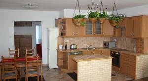 A kitchen or kitchenette at Apartment Budapest
