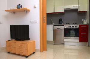 A television and/or entertainment center at Apartamentos Navas 2