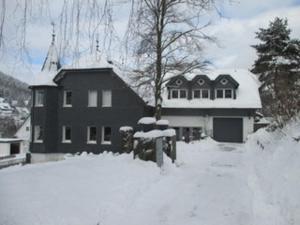 Villa Silbach im Winter