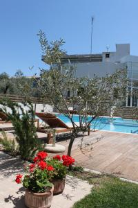 The swimming pool at or near Alkistis Hotel