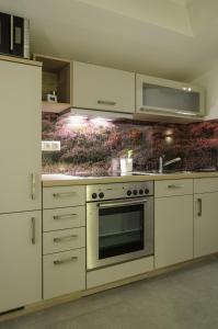 Virtuve vai virtuves aprīkojums naktsmītnē Ferienwohnung Radebeul Gerlach