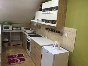 Kuchyň nebo kuchyňský kout v ubytování Apartman u Puškina