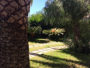 A garden outside Villa Sardinia