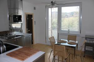 Kuchyň nebo kuchyňský kout v ubytování Apartmán Relax