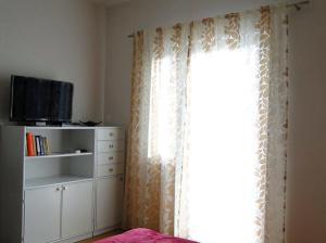 A television and/or entertainment centre at Apartments Zizic