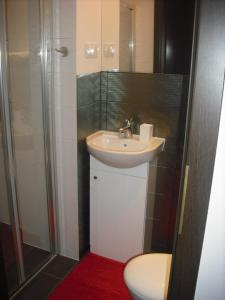 A bathroom at Apartamenty Algador