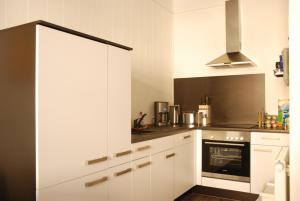 Küche/Küchenzeile in der Unterkunft Ferienwohnung Ratisbona