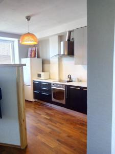 Кухня или мини-кухня в Apartment Zvezdova
