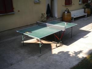 Attrezzature per ping pong presso Agriturismo Azienda Viti-Vinicola Hostettler o nelle vicinanze