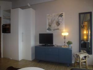 TV/Unterhaltungsangebot in der Unterkunft Appartements Beaulieu Veysonnaz