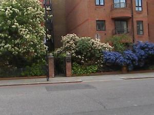 A garden outside London Kensington & Chelsea 2 Bed Zone 1 Aprt