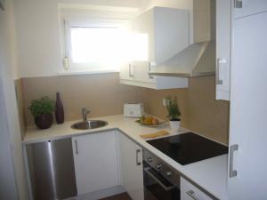 Küche/Küchenzeile in der Unterkunft Apartment Mödling