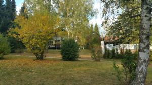 A garden outside Ferienhaus Bayerischer Wald