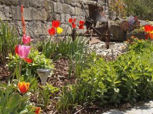 Ein Garten an der Unterkunft Ferienwohnung Lindenhof