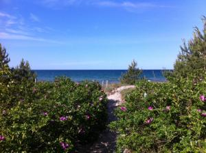 Ein allgemeiner Meerblick oder ein Meerblick von der Ferienwohnung aus