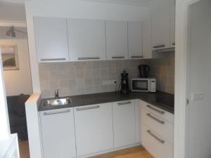 Cuisine ou kitchenette dans l'établissement Luxe Appartement Duinoord