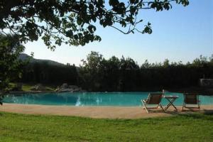 The swimming pool at or near L'Alivi di l'Osari