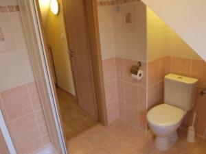 Ein Badezimmer in der Unterkunft Apartments Viktoria Klinovec