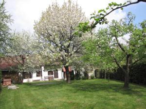 A garden outside Dreiszker Vendégház
