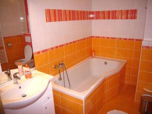 A bathroom at Czech Switzerland Castle Apartments