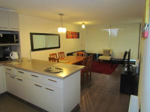 Una cocina o zona de cocina en Departamento Condominio Costa Pucón