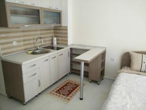 Кухня или мини-кухня в Apartment Metulevi