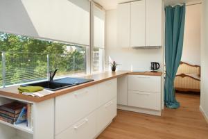 Virtuve vai virtuves aprīkojums naktsmītnē Central Apartment