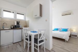 Kuchyň nebo kuchyňský kout v ubytování Studio Goga